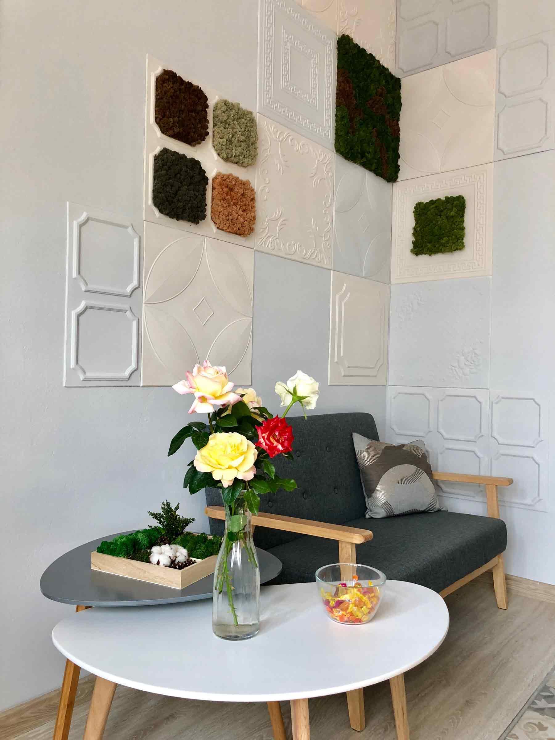 plante stabilizate pentru interior
