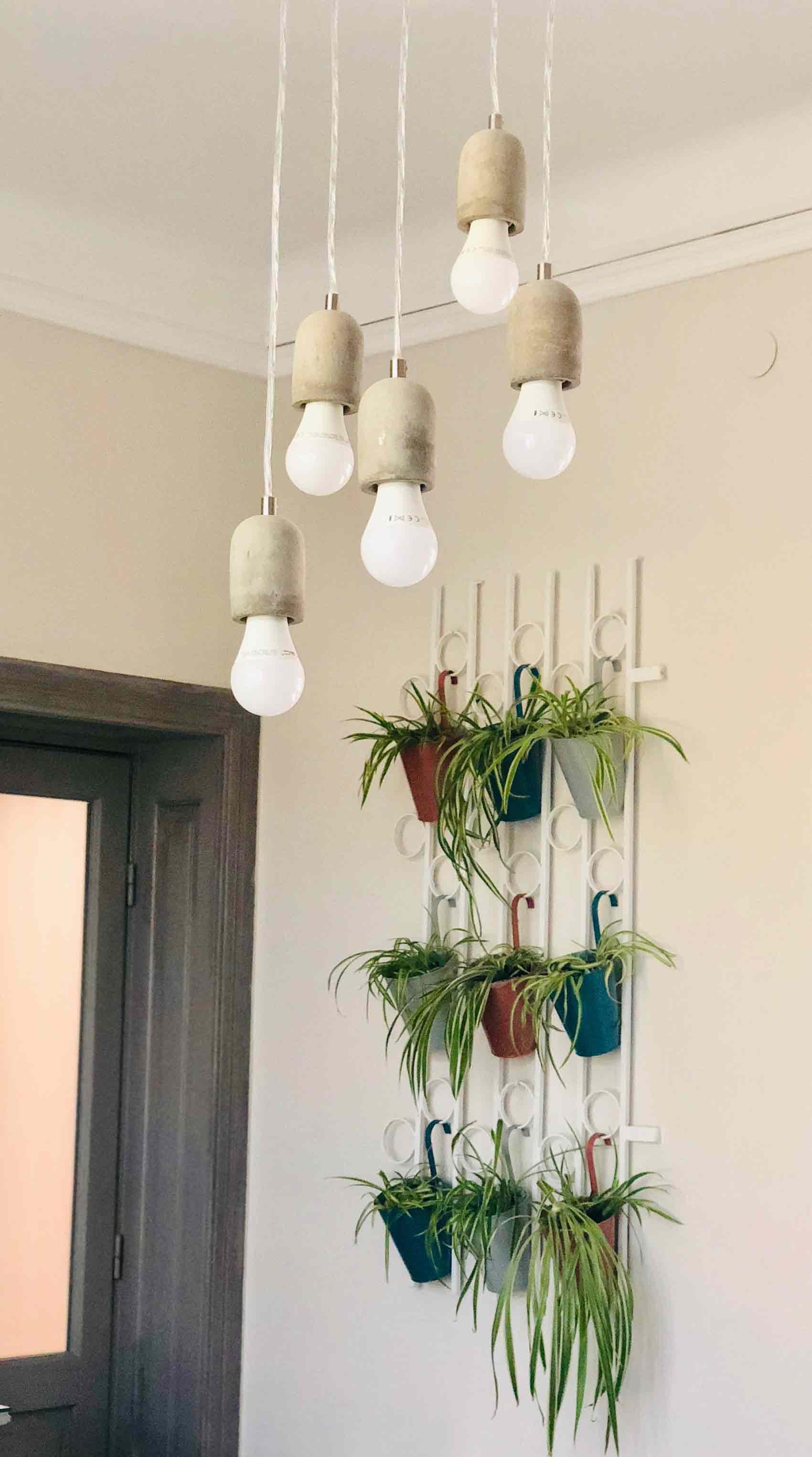 plante suspendate